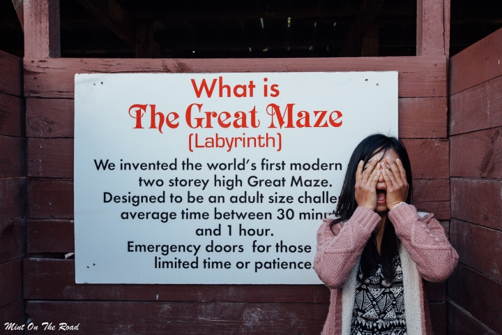 Wanaka|Puzzling World 迷失奇幻世界里